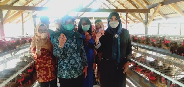 Sri Huriyati Hadi Pelajari Peternakan Ayam Petelur