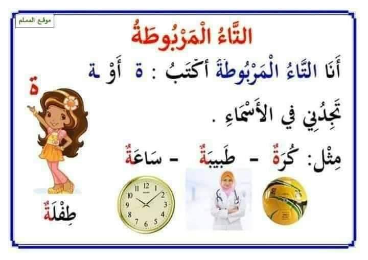ملخص قواعد اللغة العربية التعليم FB_IMG_1598779244483