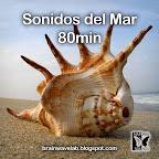 Sonidos del Mar 80min