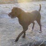 Kiya Mae on 11/3/2012