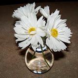 Bouquets - 101_4004.JPG