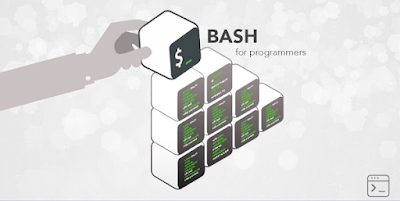 best interactive course to learn bash scripting