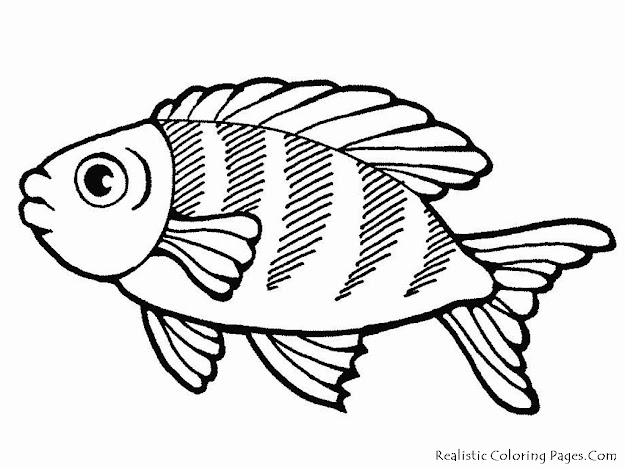 Sea Life Coloring Pages Realistic