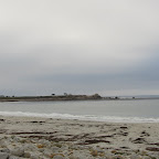 Monterey 17-miles-drive