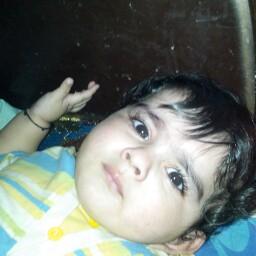 Shayan Rashid Photo 5