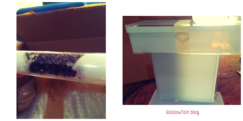 hormiguero-artificial-niños-hormigas-regalo