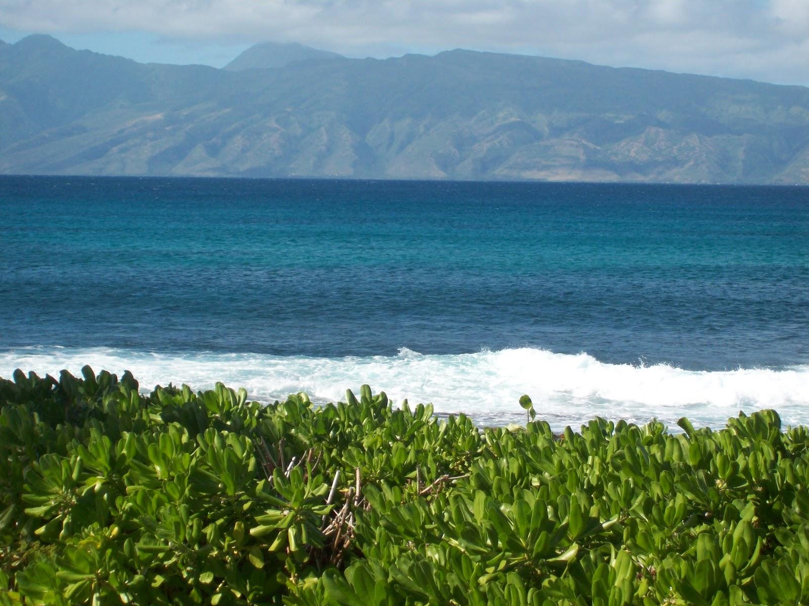 Hawaii Day 6 - 114_1794.JPG