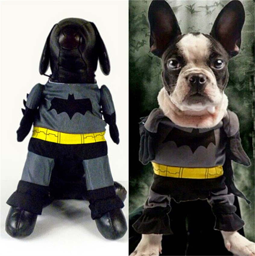 neu batman kost m f r hunde karneval fasching halloween hundeshirt hundepullover ebay. Black Bedroom Furniture Sets. Home Design Ideas