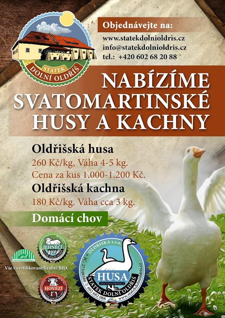 savatomartinska_hua_kachna_rijen_2013_003