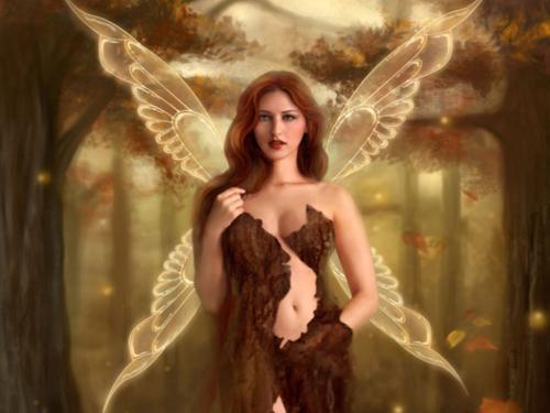 Tree Fairy, Fairies Girls