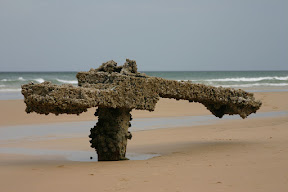 The prow of the wreck of the Maheno