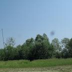 2011 18 iunie 013.jpg