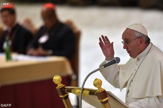 Pope  francis synod50