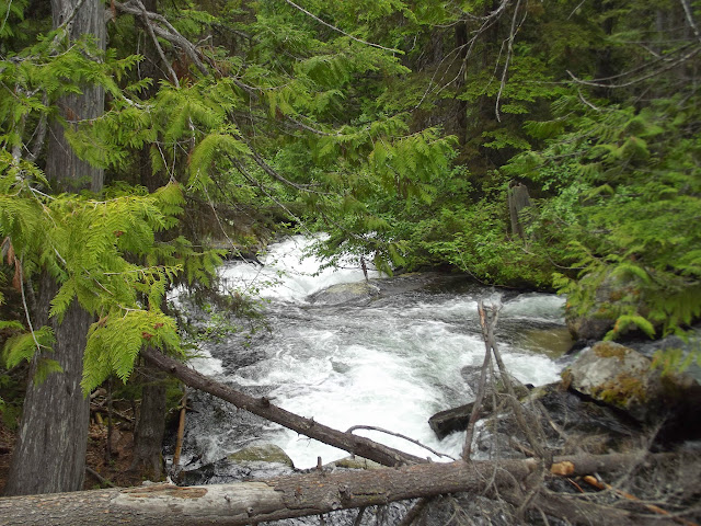 White water/hike 2014 - DSCF3465.JPG