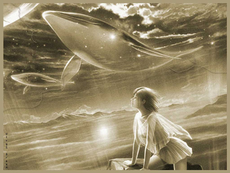 Celestial Whales, Mystery