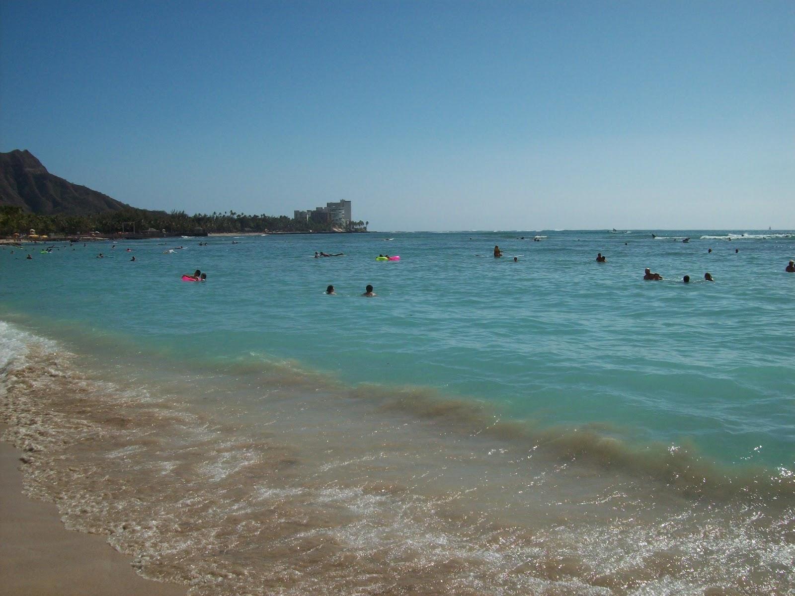 Hawaii Day 3 - 114_1128.JPG