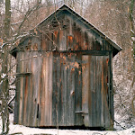 Timothy_Albon-Shed__Noble_County.jpg