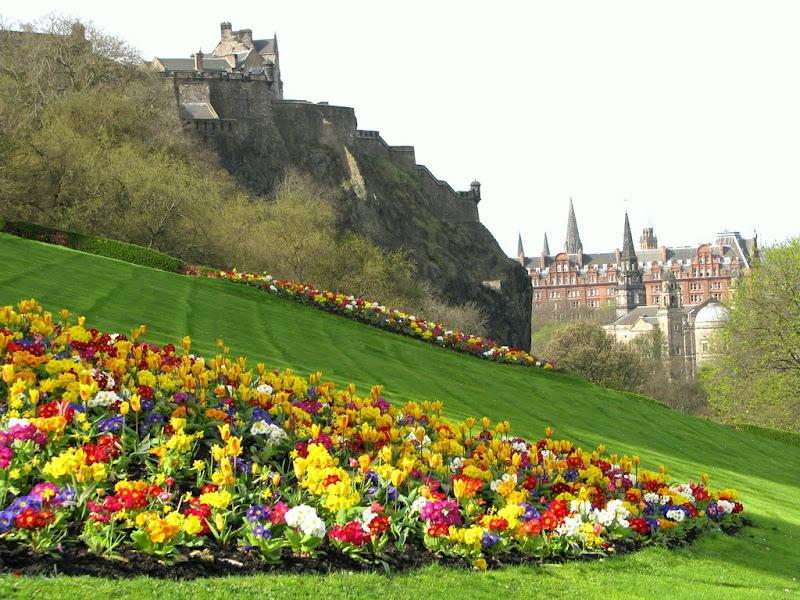 IMG_2443 - edinburgh castle