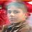 كرار الربيعي's profile photo