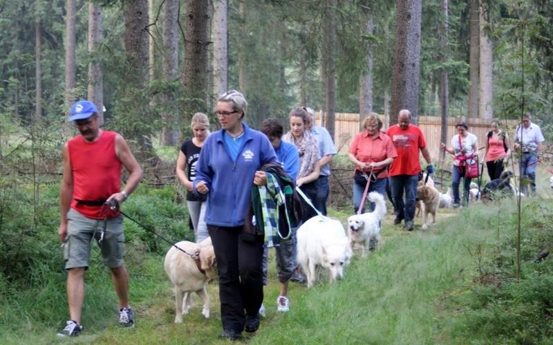 26. Juli 2016: On Tour zum Wolfsgarten bei Wülfersreuth - Schweinsbach%2B%252818%2529.jpg