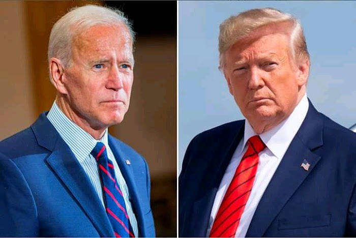 Who do you want to win the election? Trump or Joe **** EcoCityTvNews
