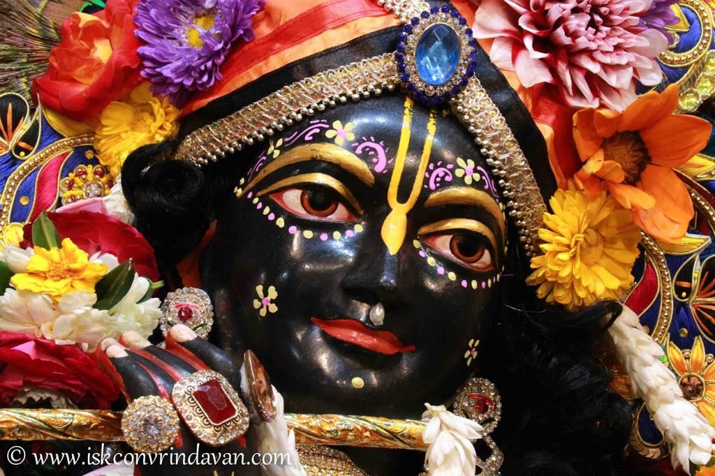 ISKCON Vrindavan Sringar Deity Darshan 01 Mar 2016 (8)