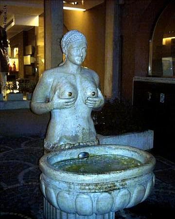 Fontana di Treviso