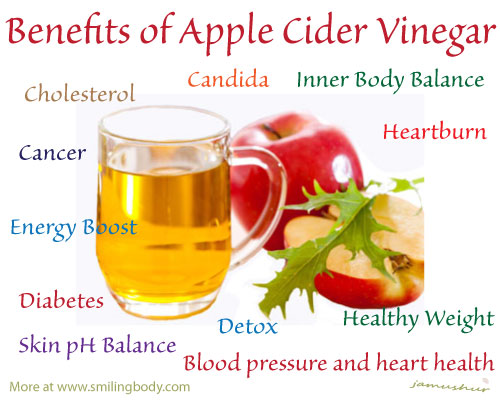 A friend of mine recommended using more apple cider vinegar as daily supplement for weight loss and for an overall healthy body. So I decided to give this book a look over to see what are the really benefits of Cider Vinegar.