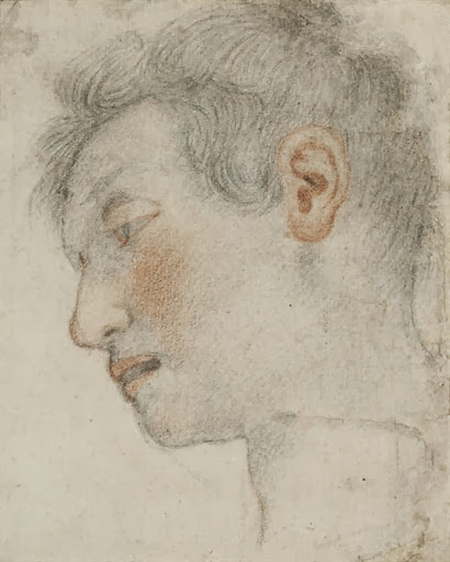 Jacopo Vignali - Study of a male head