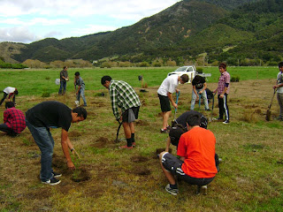 Nelson-Boys-College-pupils-helping-with-planting