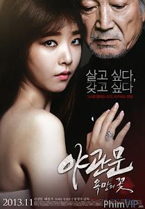 Tình Không Biên Giới - Door Tonight poster