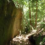 Track under boulder (94813)