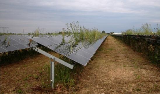[solar+energy+obama+style%5B3%5D]
