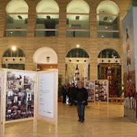 Exposició 15 anys Biblioteca Pública 17-01-11 - 20110117_518_Lleida_Exposicio_15_anys_CdL.jpg