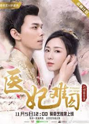 Princess at Large China Web Drama