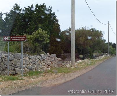 Croatia Online - Olive Gardens of Lun