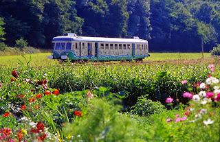 (7)train-touristique-de-la-vallee-du-loir©CDT41-dsourice