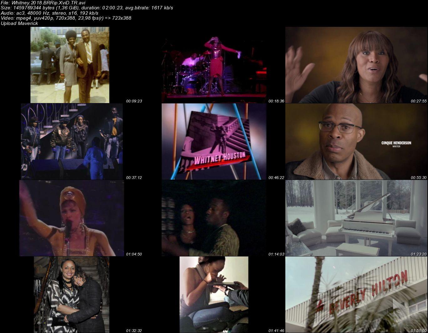 Whitney - 2018 Türkçe Dublaj BRRip indir