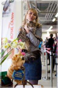 cats-show-24-03-2012-fife-spb-www.coonplanet.ru-074.jpg