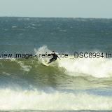 _DSC8994.thumb.jpg