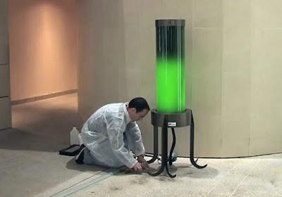 lampu dari alga hijau