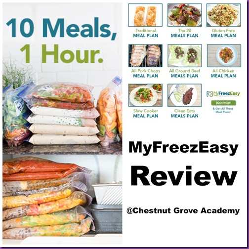 MyFreezEasy Review