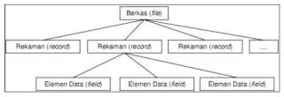 Struktur hirarki sistem basis data