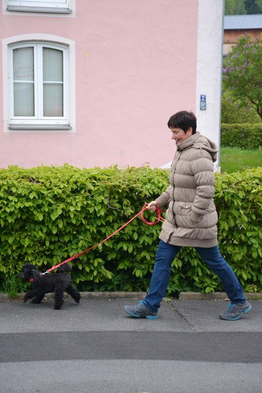 17. Mai 2016: On Tour in Pechbrunn - DSC_0280.JPG