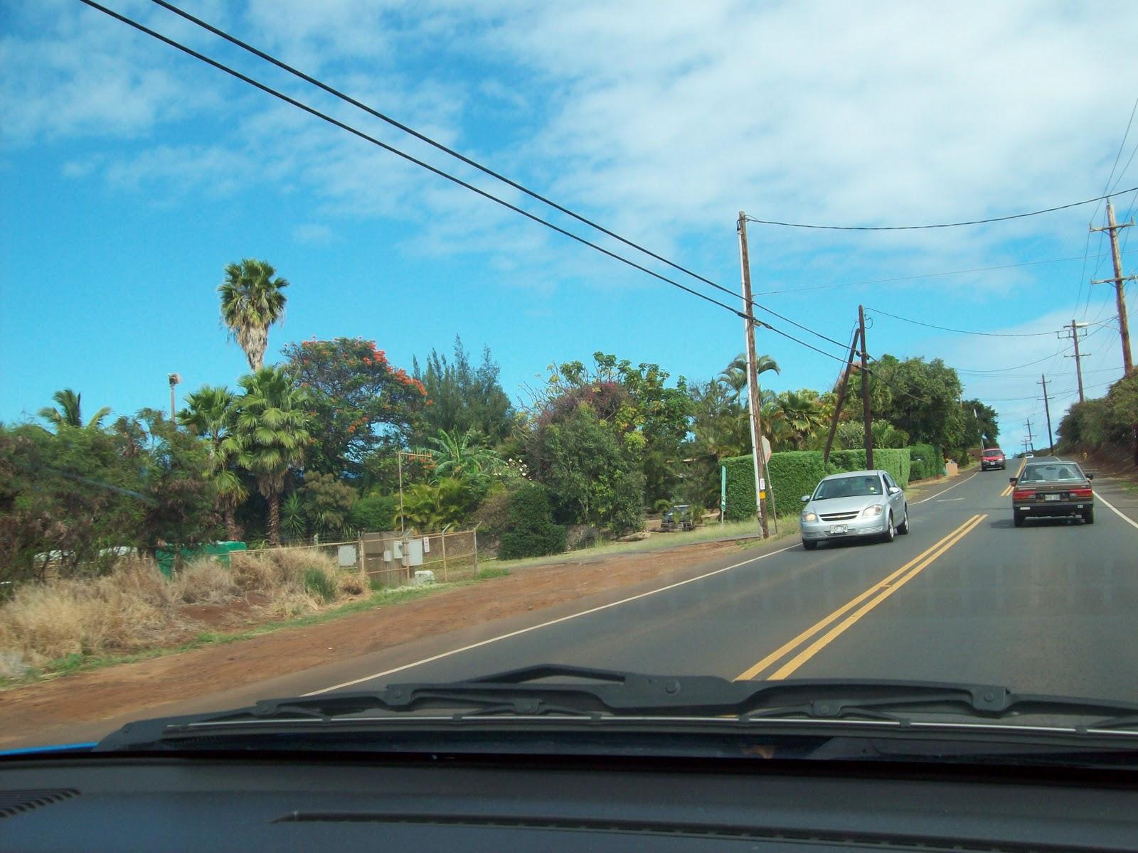 Hawaii Day 8 - 114_2184.JPG