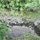 Hawaii Day 5 - 100_7420.JPG