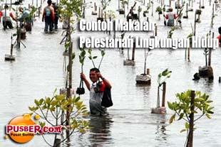 Contoh Makalah Pelestarian Lingkungan Hidup - pusber.com
