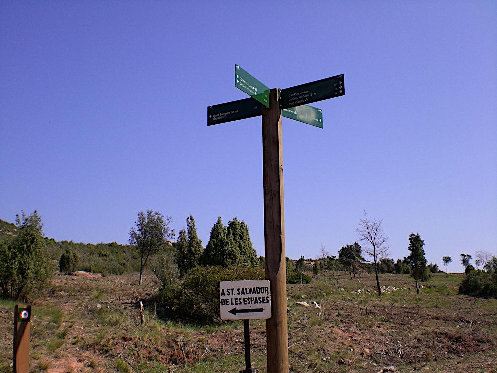 Sortida Sant Salvador de les espasses 2006 - CIMG8389.JPG