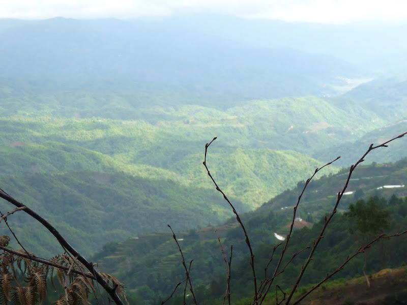Chine .Yunnan,Menglian ,Tenchong, He shun, Chongning B - Picture%2B896.jpg