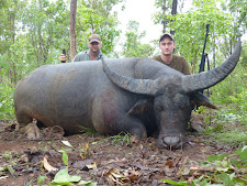 Young Rasmus Hansen with a huge bodied bull with wide thick horns.